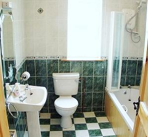 Main bathroom with shower over tub